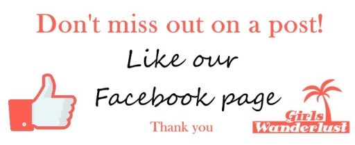 like our facebook page paintnet