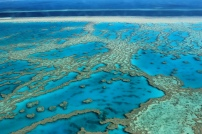 OC 1 Great Barrier Reef