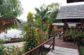 From the Danpaati River Lodge website