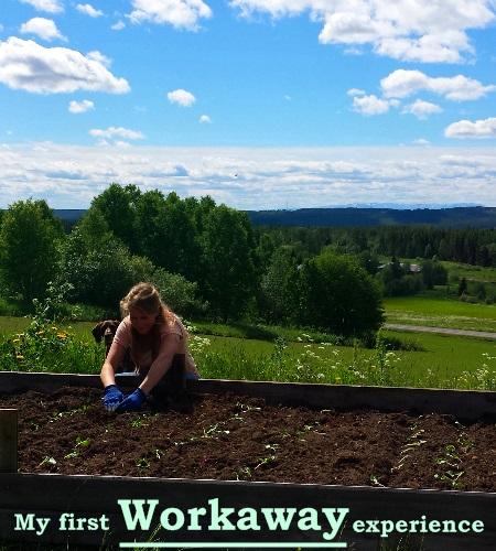 coverphoto-workaway