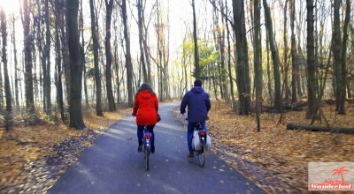 Amsterdam Forest cycling.JPG