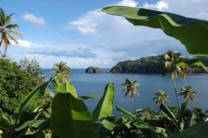 Dominica (from Flickr.com)