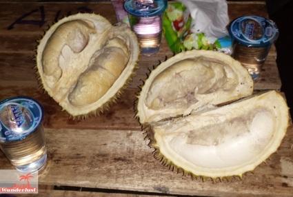 Durian. City guide Palembang, Sumatra, Indonesia – activities and food