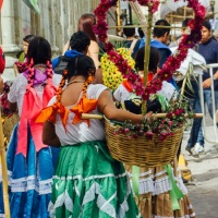 Travel tips for exploring Oaxaca city in Mexico