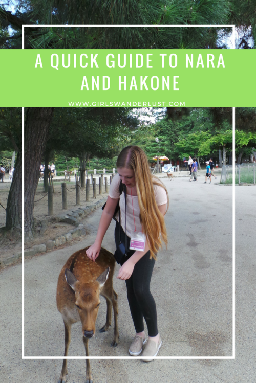 A quick guide to Nara and Hakone