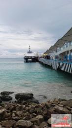 Port to Cozumel