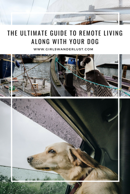 Pin The ultimate guide to remote living along with your dog by @girlswanderlust #girlswanderlust #travel #remotetravel #remotetraveling #traveling #wanderlust #dogs #dog #doglover.png